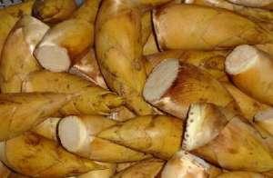 冬笋的功效与作用 吃冬笋的好处